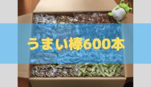うまい棒600本